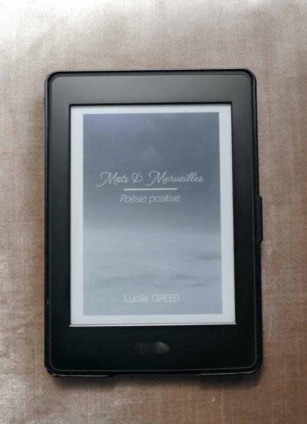 Recueil poésie ebook