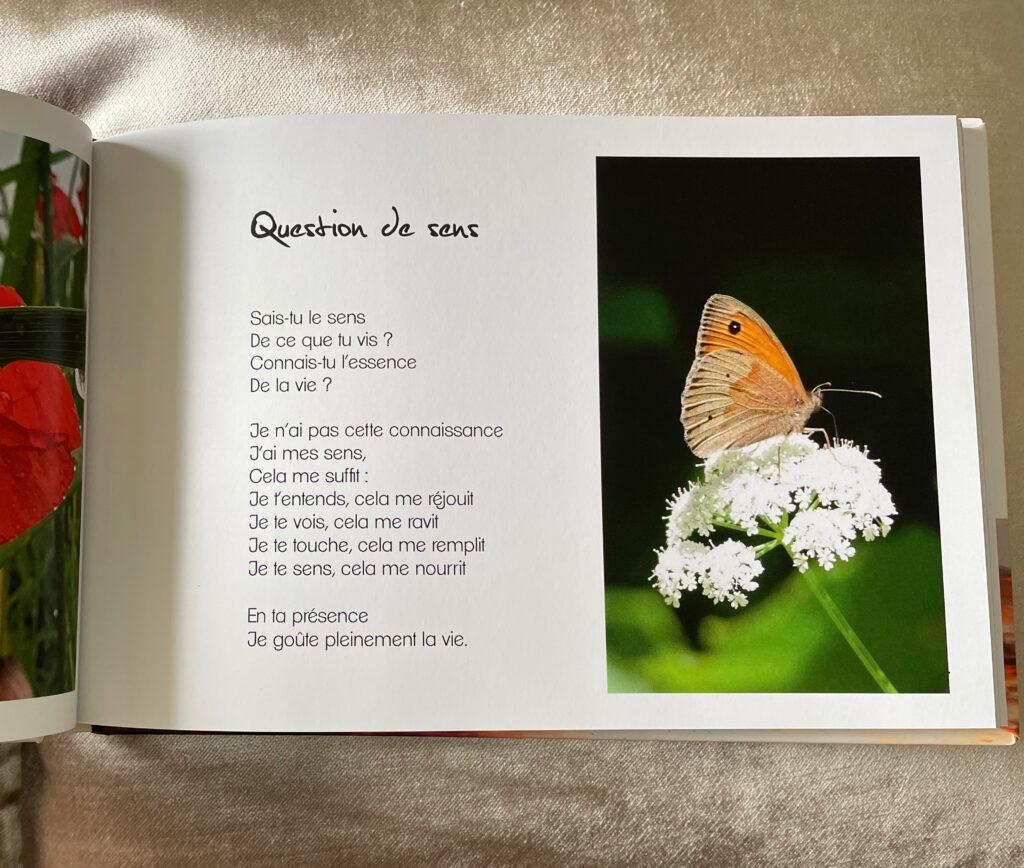 Recueil poésie illustré